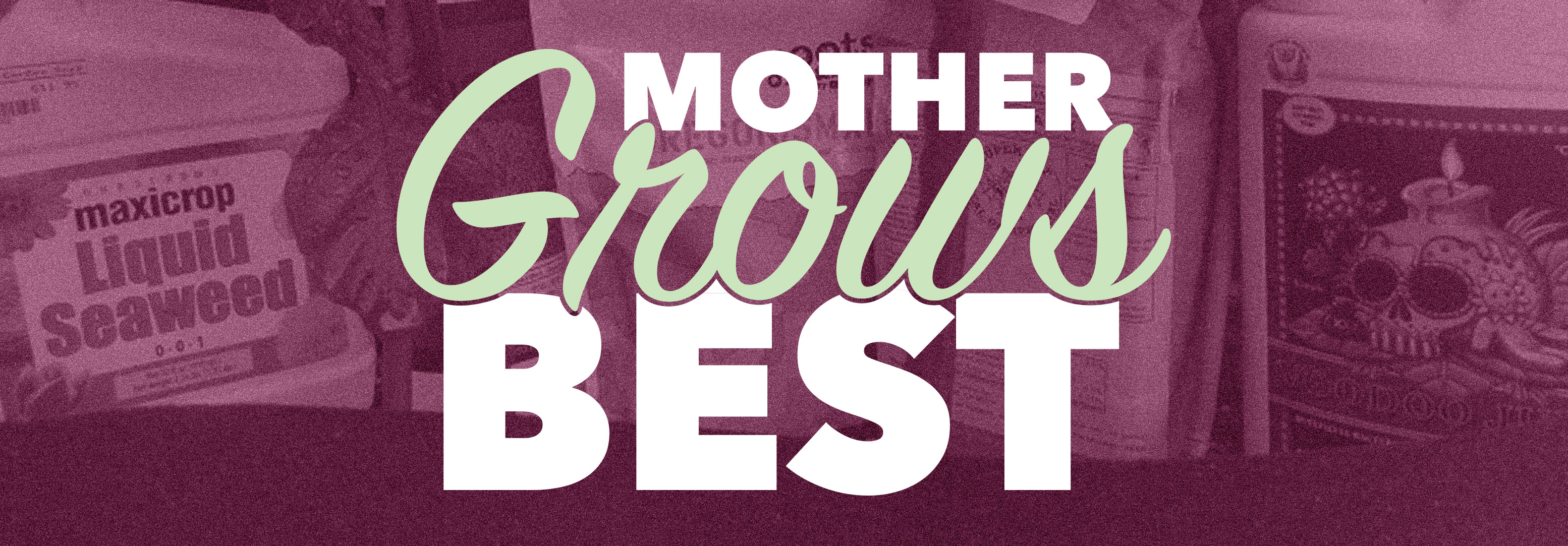 Talking-Shop-Mother-Grows-Best