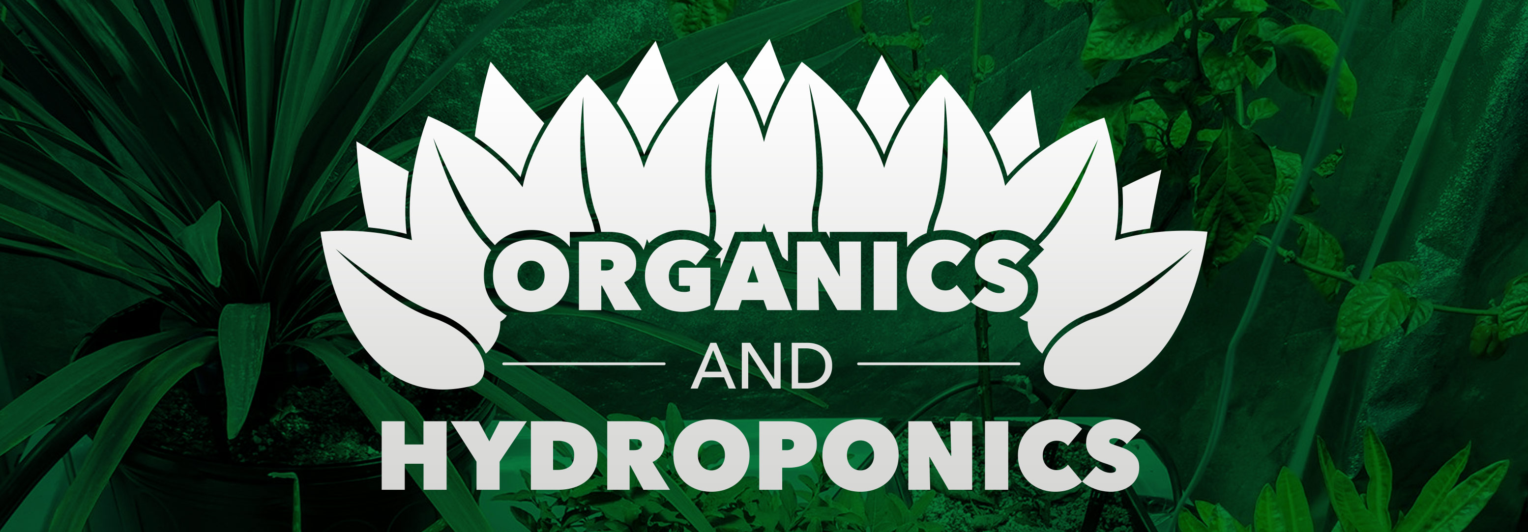 Talking-Shop-Organics-And-Hydroponics