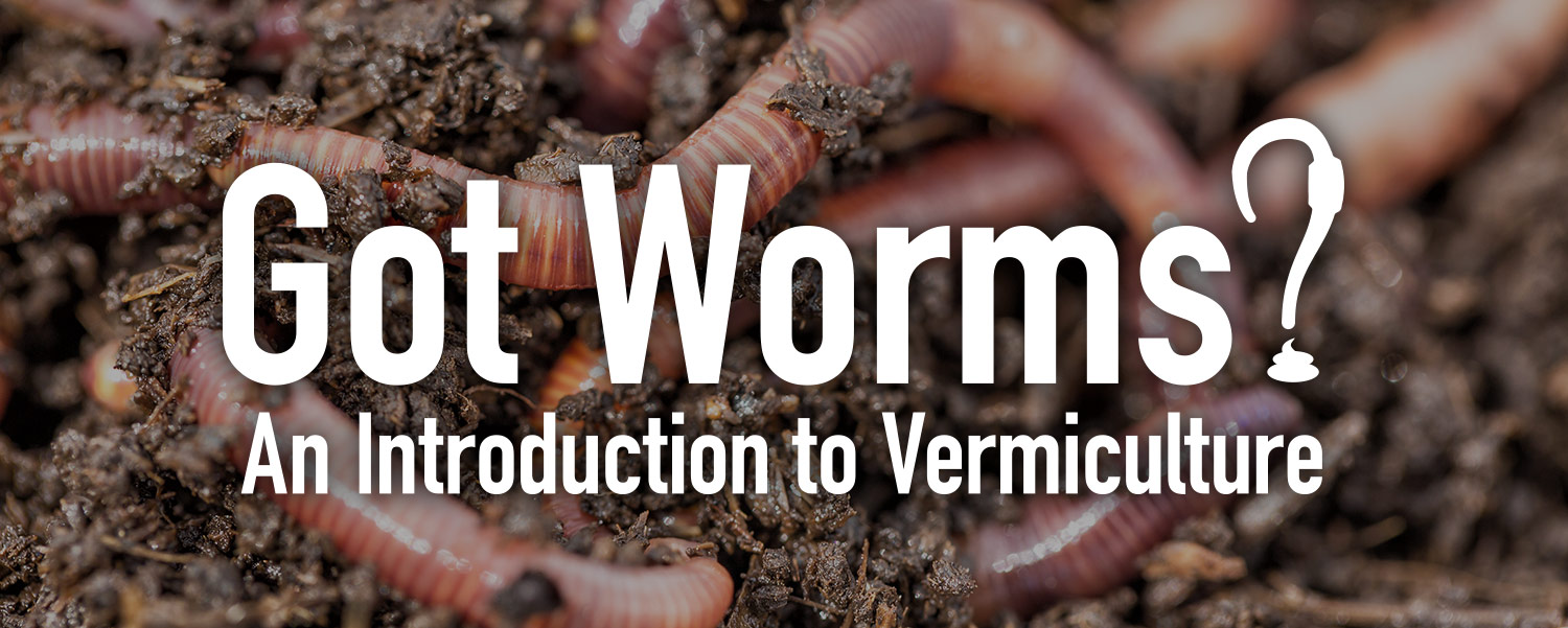 Vermicomposting & Vermiculture Introduction