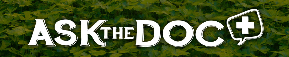 Ask the Doc Articles and Videos Information Category