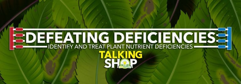 Identify Plant Nutrient Deficiencies and Treatments