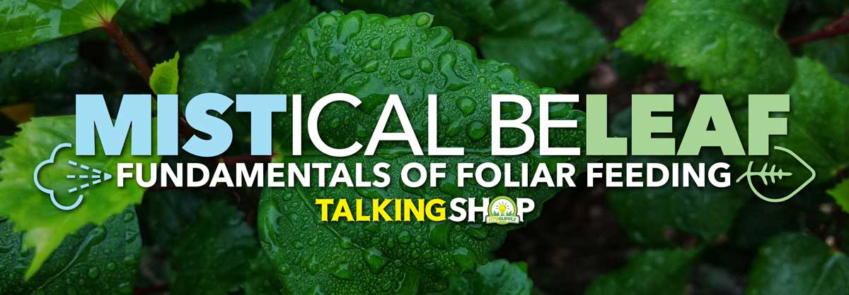 talking-shop-foliar