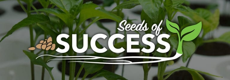 How To Start Seeds - A Guide to Germination & Seedling Growth