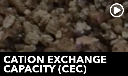 Cation Exchange Capacity!