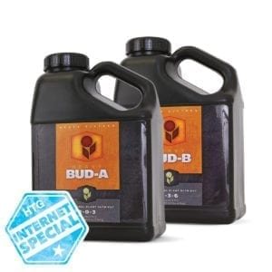 Heavy 16 Bud A And B Internet Special Pricing