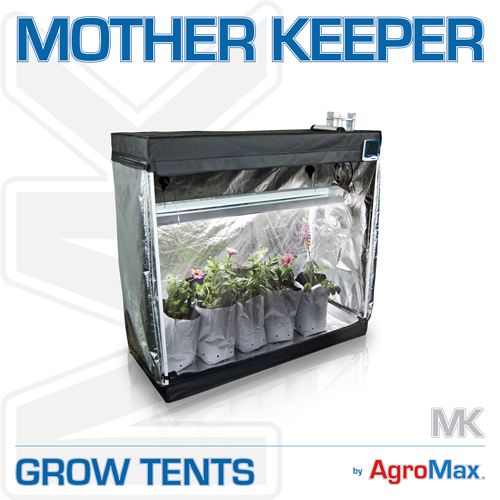 Mother Keeper