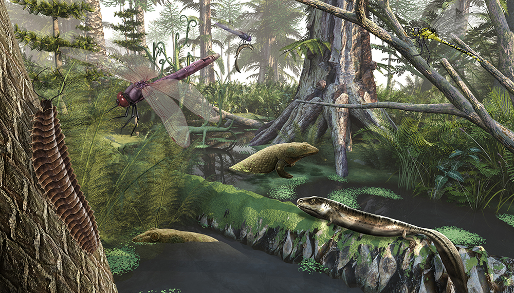Carbon Dioxide Produced Giant Plants in Prehistoric Times