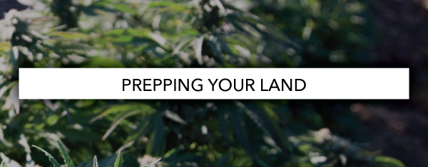 Prepping your land