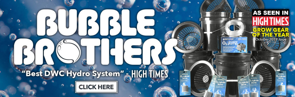 htg-supply-home-banner-bubble-high-times-1220x400-2