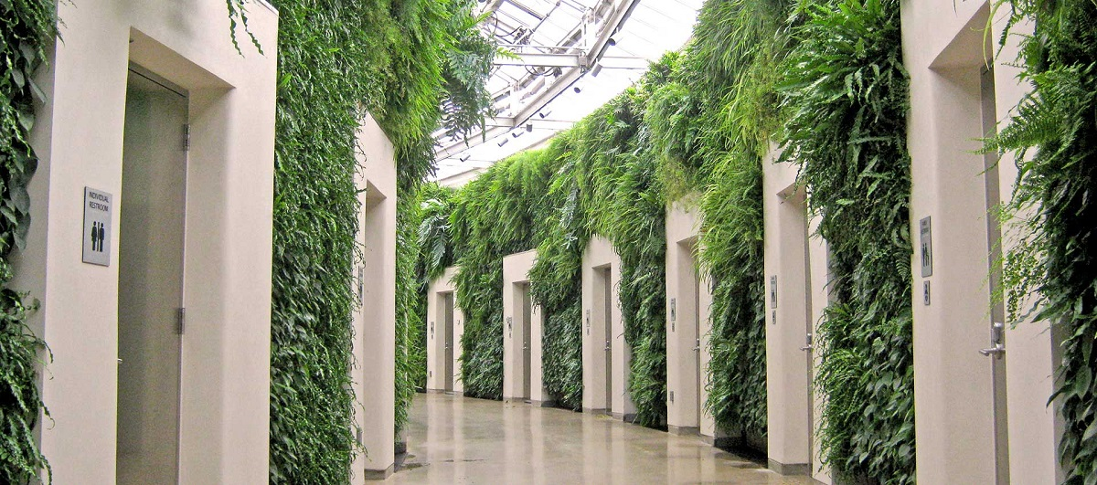Green Wall Inside of a Building