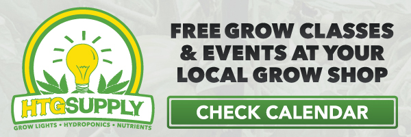 Free Classes & Events at Your Store