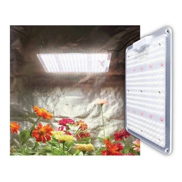 SS-1000 100w LED Grow Light for Indoor Grow Tents