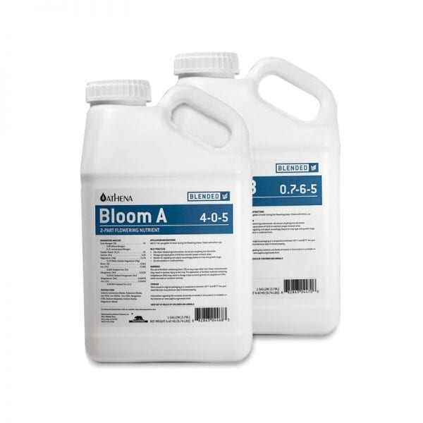 Athena Bloom A&B Gallons