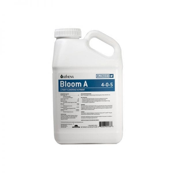 Athena Bloom A Gallon