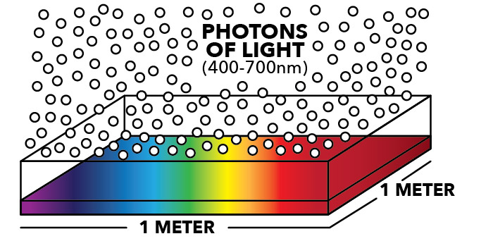 How Photosynthetic Photon Flux Density is Meaured