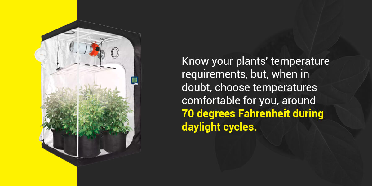 What Temperature Should I Keep My Grow Room At