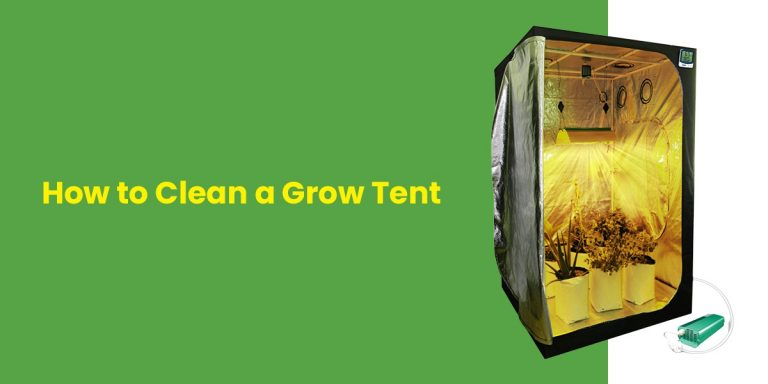 How to Clean a Grow Tent